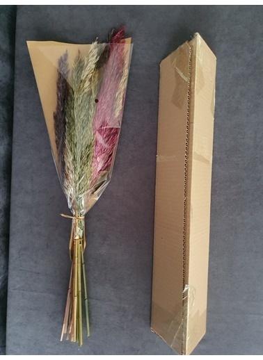 Kuru Çiçek Deposu Kuru Çiçek Şoklanmış 10'Lu Pampas Otu Karışık 60 Cm Renkli